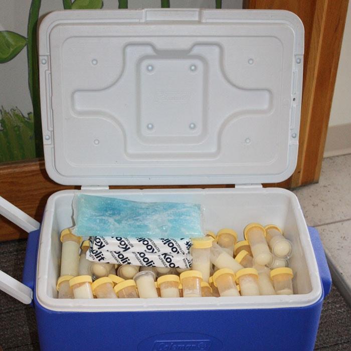 milk arrives frozen