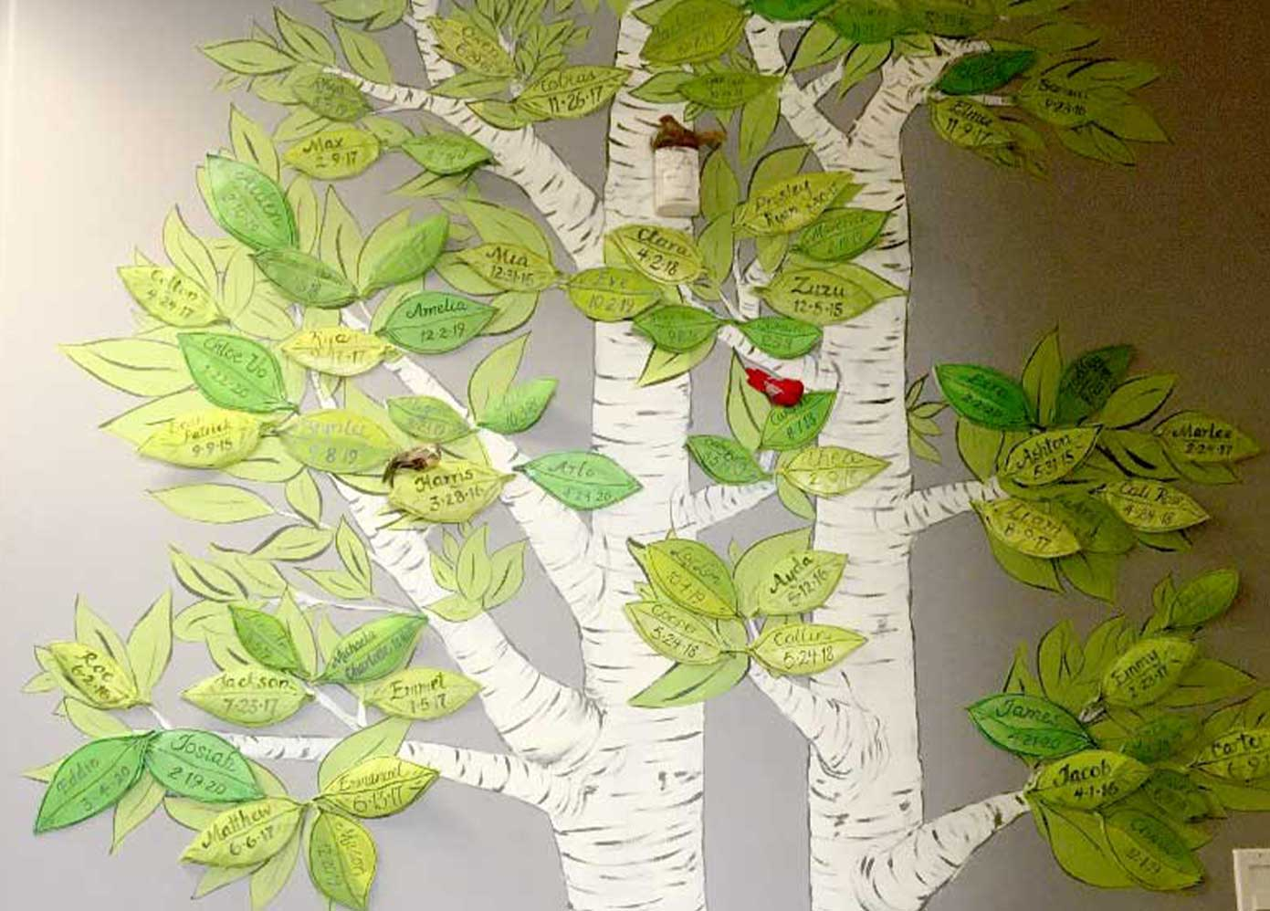 Milk Bank Bereavement Tree with Babies names on leaves